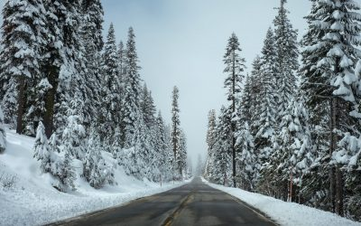Travel Tip – Holiday Road Trips